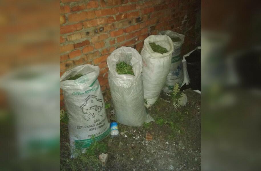 Хранение и перевозка марихуаны амстердам фестиваль конопли