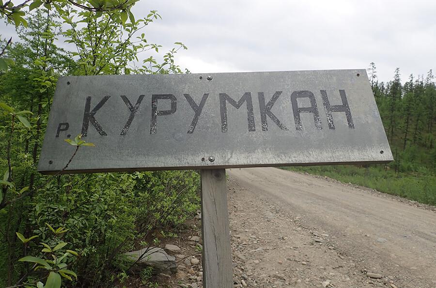 Суд приостановил работу золотодобывающей компании в Амурской области
